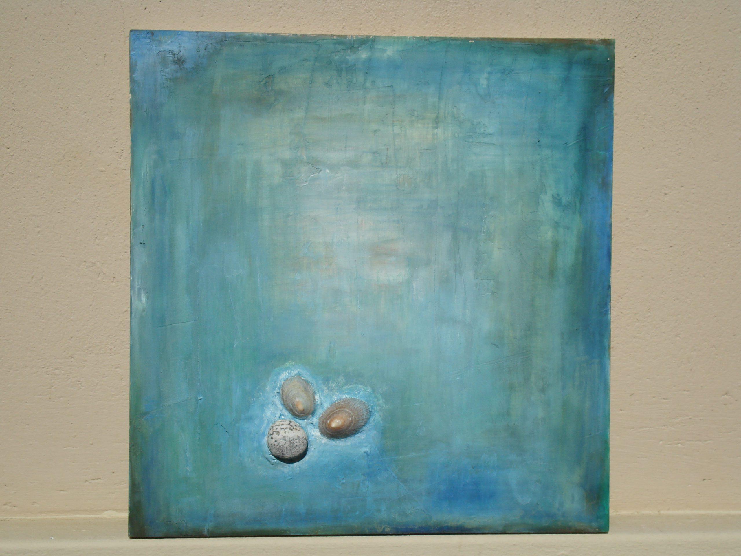 Stein und Muscheln